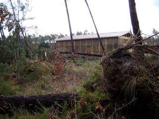 Tempête 2009